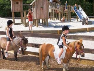 © Vakantiepark PonyparkCity