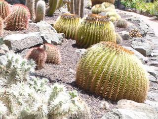 Flora - Botanischer Garten